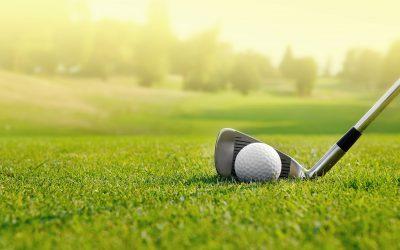 Golfkentällä biohiili on todellinen hiilinielu